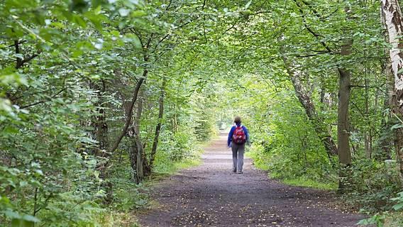 Symbolfoto: Frau wandert im Wald